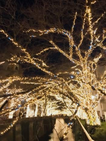 ありがとう(2017/12/24 22:34)竹内 雛乃のブログ画像