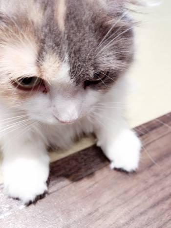 マーキング(2018/03/07 01:01)竹内 雛乃のブログ画像