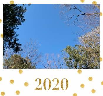 こんにちは✨(2020/01/07 16:17)水野 紫穂のブログ画像