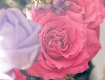 こんにちは✨(2019/04/13 12:42)篠田 紗季のブログ画像