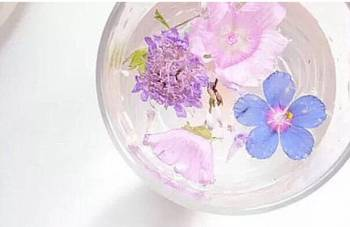 こんにちは(2019/07/26 13:19)篠田 紗季のブログ画像