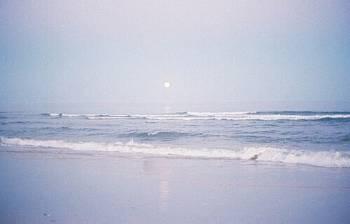 海🏖(2019/08/23 13:24)篠田 紗季のブログ画像