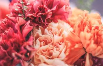 こんばんは(2020/10/30 18:26)篠田 紗季のブログ画像