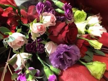 ありがとう(2020/11/19 15:01)篠田 紗季のブログ画像