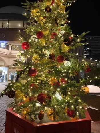 おすそ分け💖(2020/12/18 10:52)小寺 杏樹のブログ画像