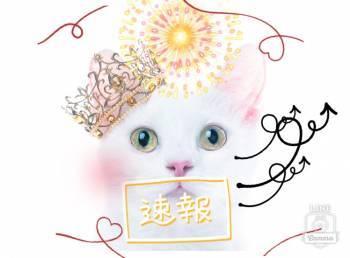 こんにちは❣️(2021/04/24 16:42)籏崎 スミレのブログ画像