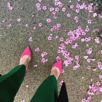 春を感じて@ユミコ(2019/03/25 15:30)大橋 ユミコのブログ画像