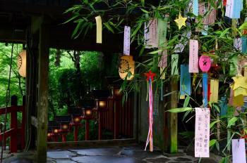 七夕@ユミコ(2021/07/07 11:43)大橋 ユミコのブログ画像